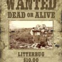 How To Make An Old Western Wanted Photo With iPiccy