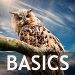 New To iPiccy? Basic Features Overview