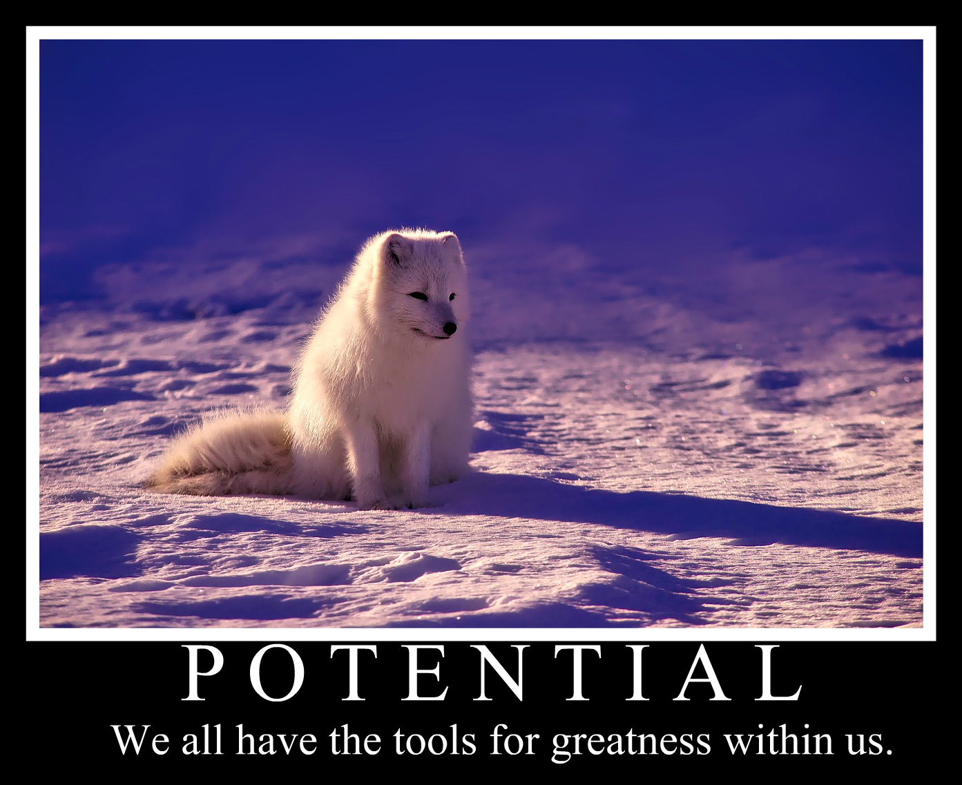 how to make motivational posters in ipiccy   ipiccy photo editor blog ipiccy photo editor blog